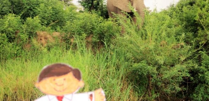 Flat Stanley's Adventure on the Zambezi River