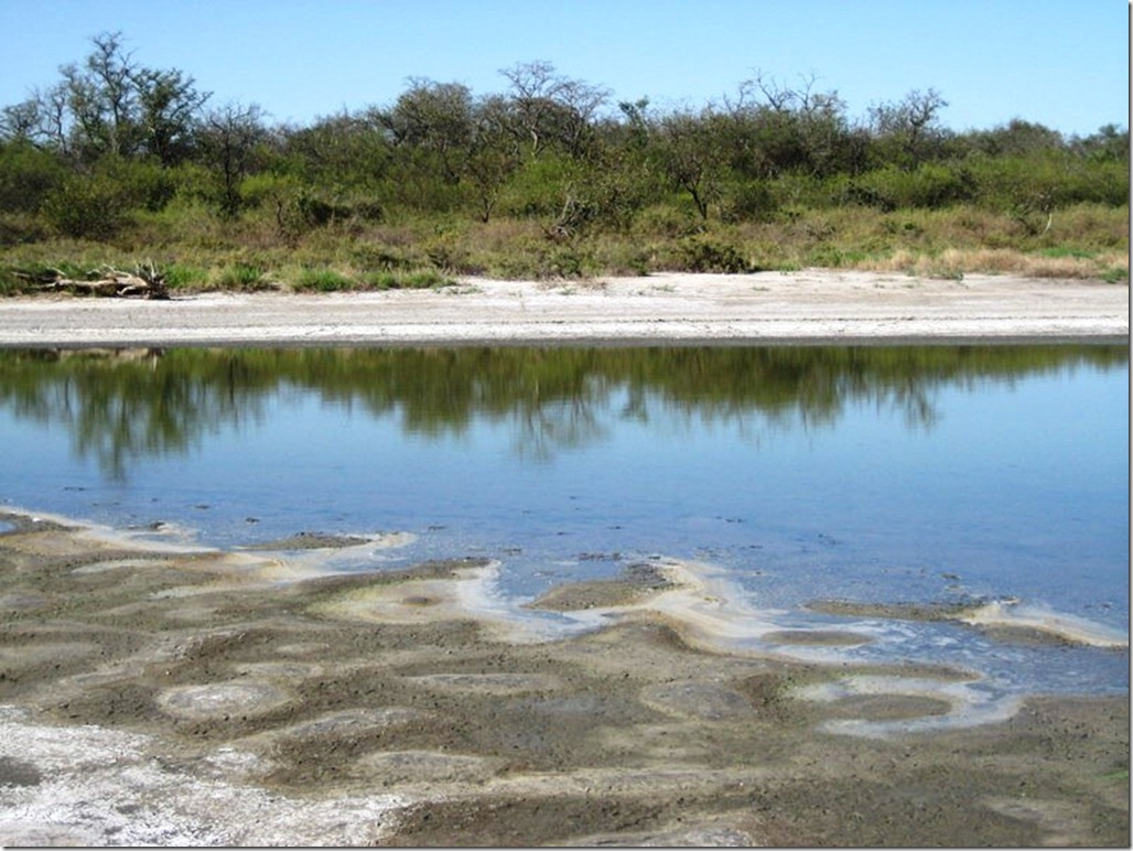 2008_08_31 Paraguay Chaco (20)