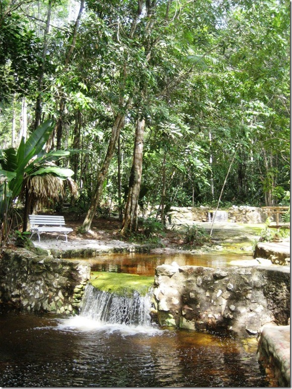 2008_07_17 Brazil Amazon Resort (15)