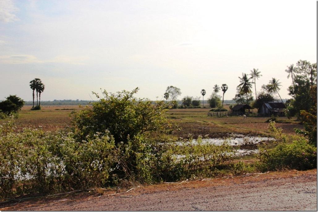 2012_12_31 Cambodia Wilderness (10)