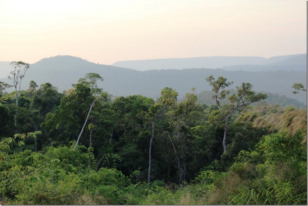 2012_12_31 Cambodia Wilderness (17)