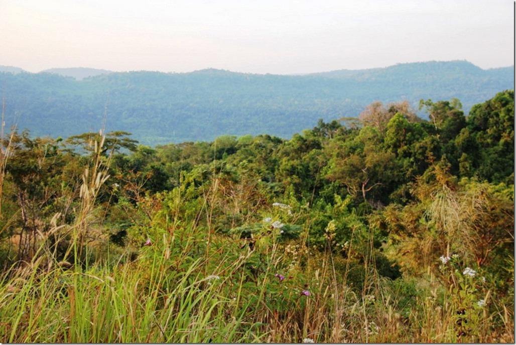 2012_12_31 Cambodia Wilderness (18)