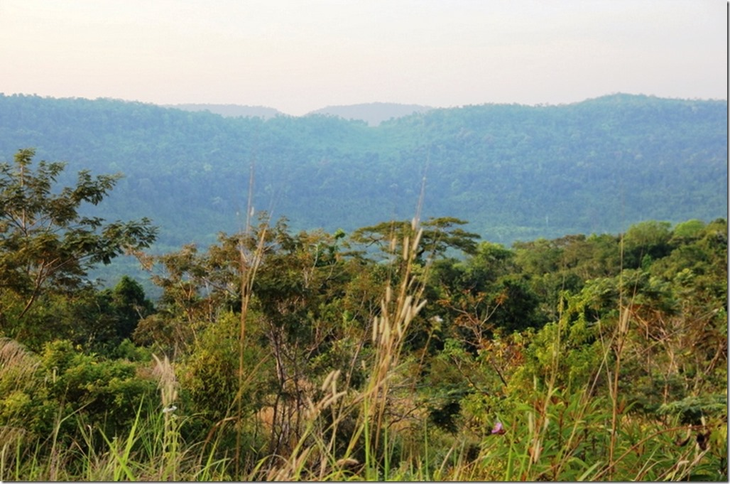 2012_12_31 Cambodia Wilderness (19)