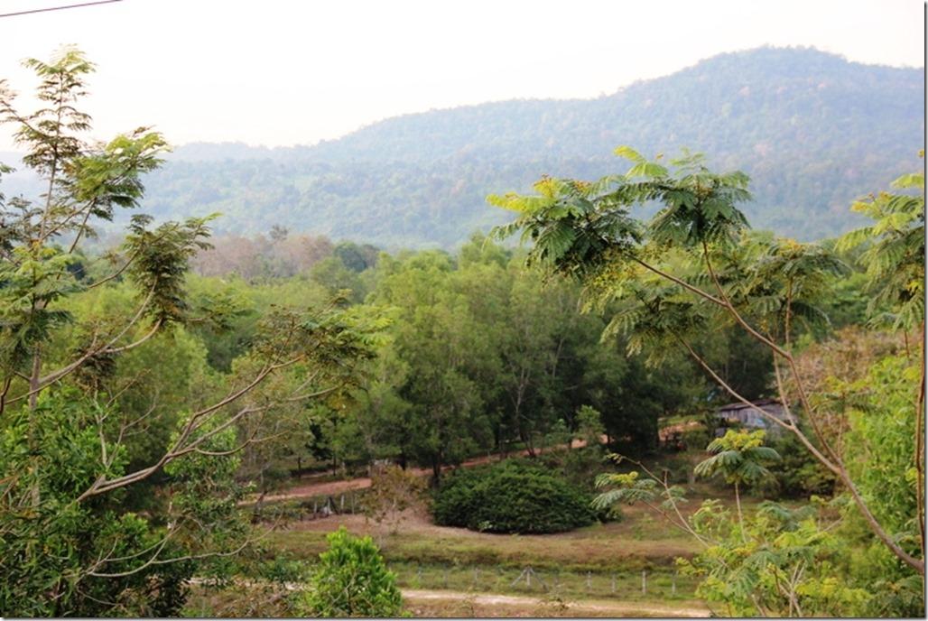 2012_12_31 Cambodia Wilderness (20)