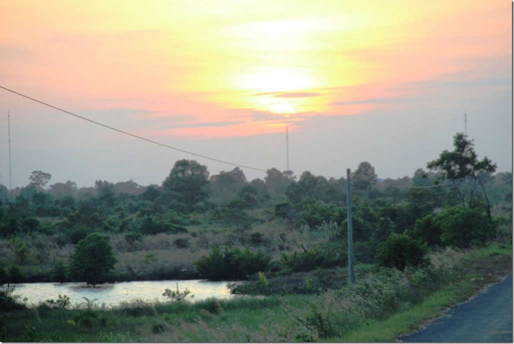 2012_12_31 Cambodia Wilderness (26)