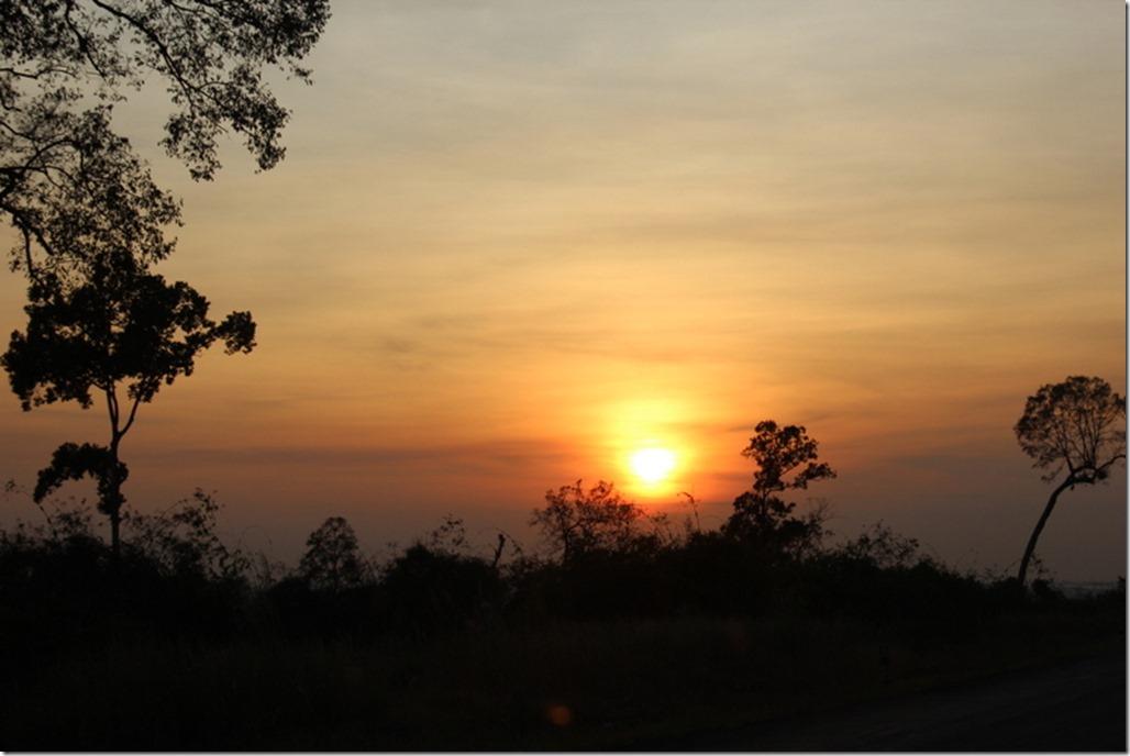 2012_12_31 Cambodia Wilderness (28)