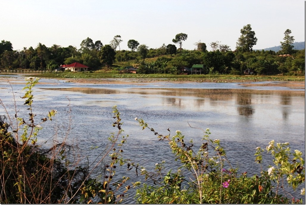 2012_12_31 Cambodia Wilderness (5)