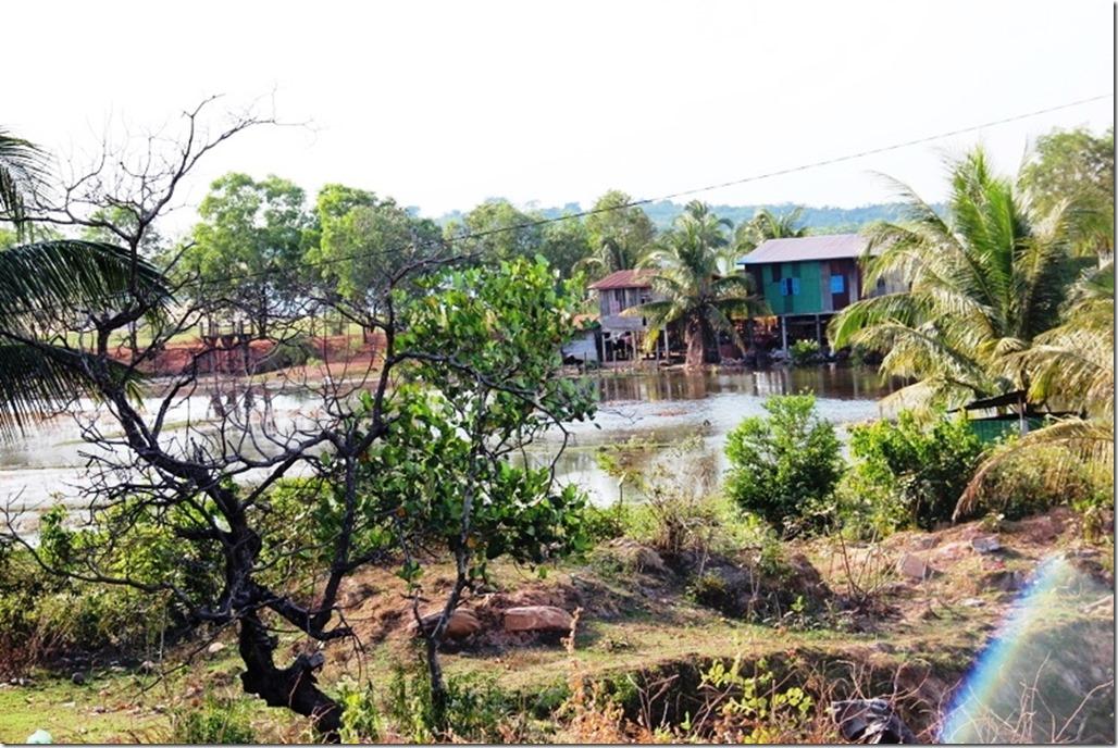 2012_12_31 Cambodia Wilderness (6)