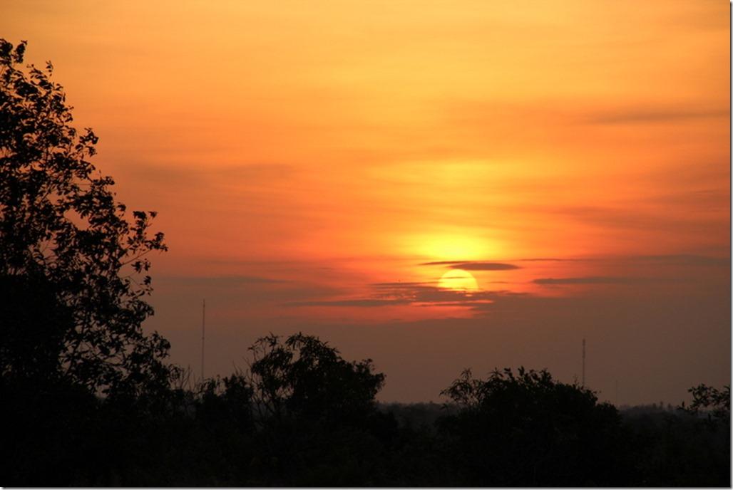 2012_12_31 Cambodia Wilderness