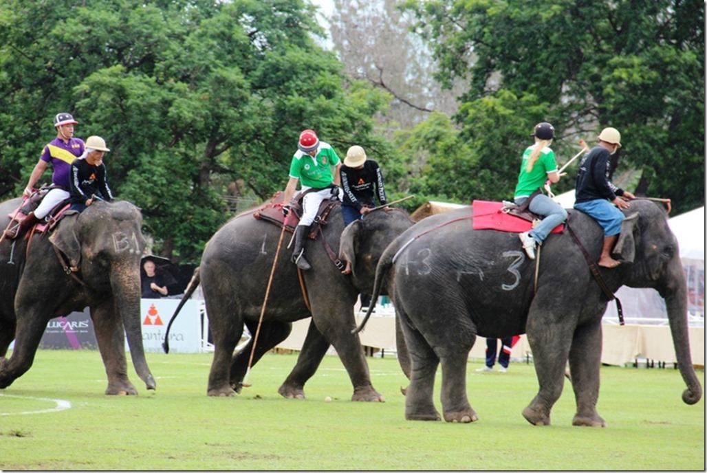 2012_09_06 Thailand Hua Hin Elephant Polo (14)