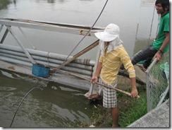 2011_10_20 Swollen Canal (9)