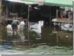 Bangkok Flooding:  Other News Sources