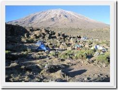 Kilimanjaro (1)
