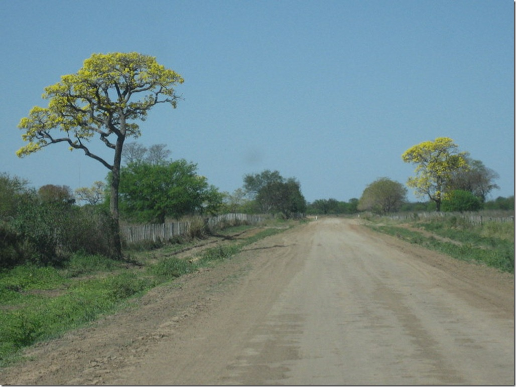 2008_08_31 Paraguay Chaco