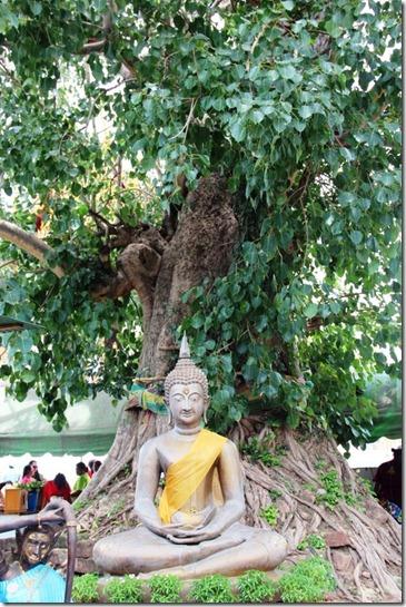 2012_08_31 Wat Mahathat (26)