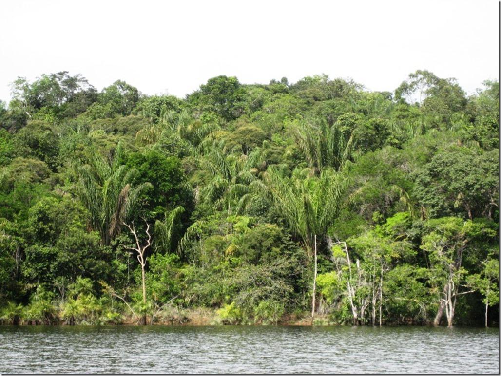 2008_07_17 Brazil Amazon River (8)