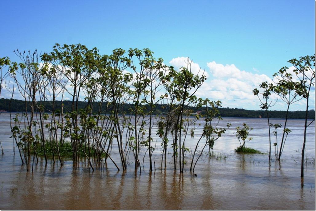 2012_07_20 Brazil Amazon Meeting (10)