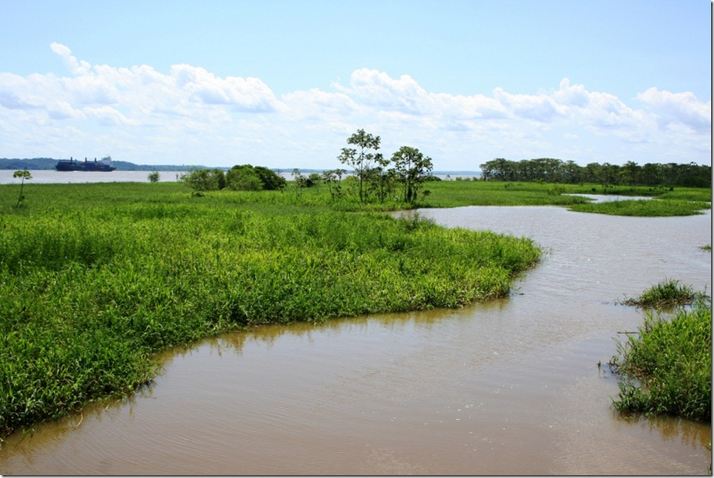 2012_07_20 Brazil Amazon Meeting (8)