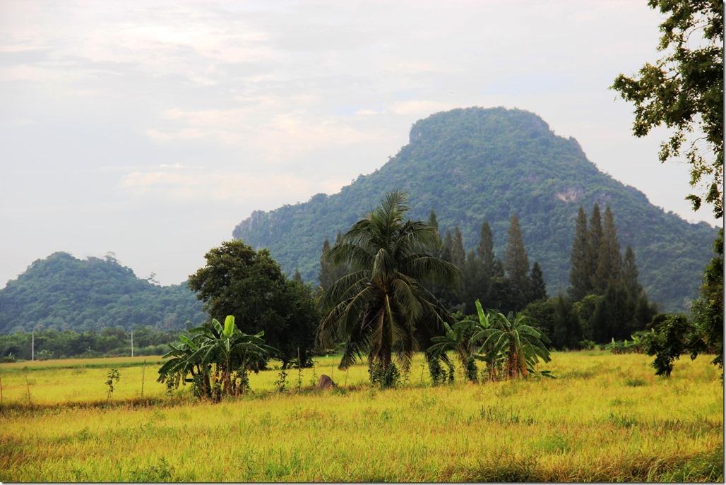 2012_09_15 Thailand Hua Hin Countryside (7)