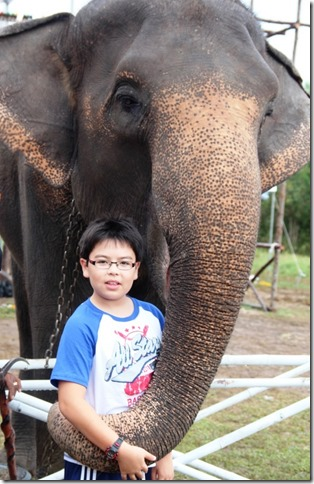2012_09_06 Thailand Hua Hin Elephant Polo (8)